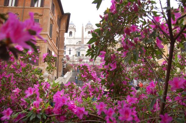 Fleurs Place d'Espagne Rome