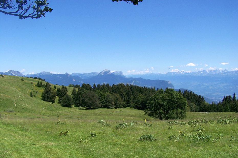 Magnifique paysage sur la chaîne des Alpes