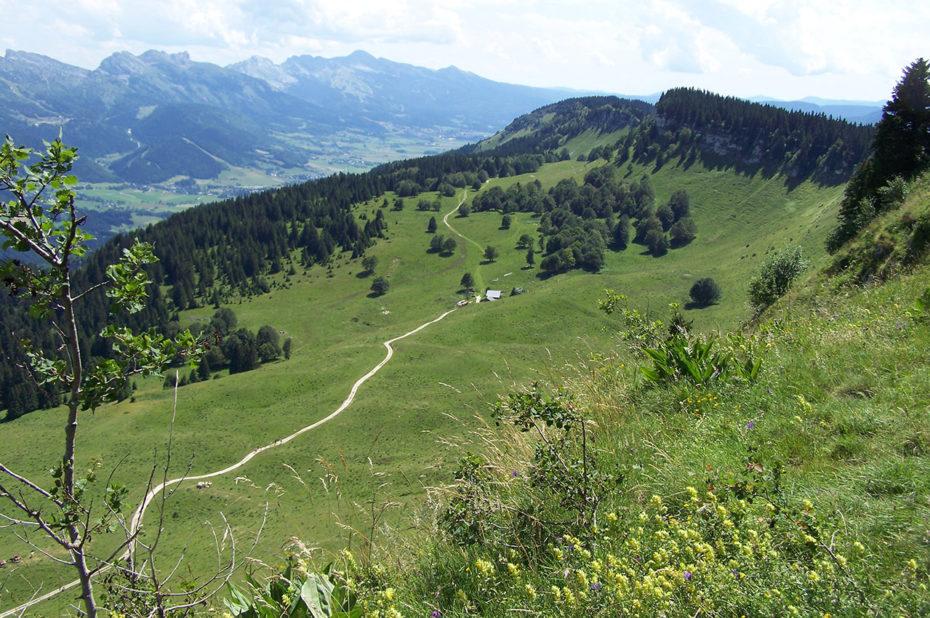 Sentier de randonnée vers la Molière