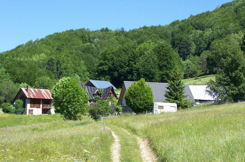 Chemin menant aux granges de Joigny