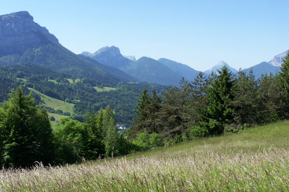 Entre champs et montagne