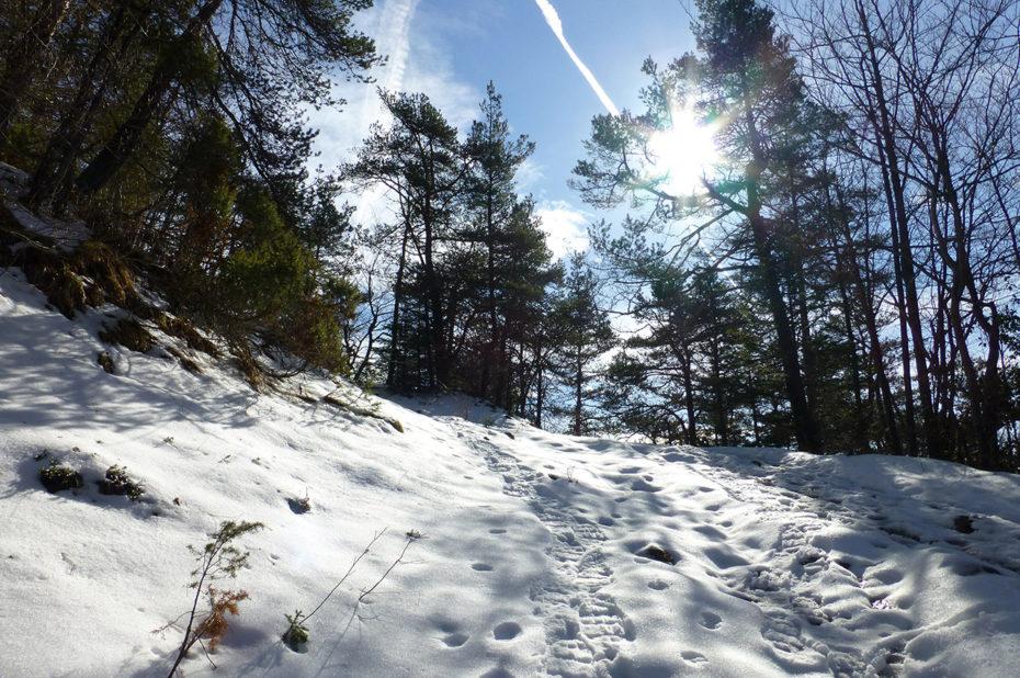 Sentier enneigé montant aux crêtes de la Drière