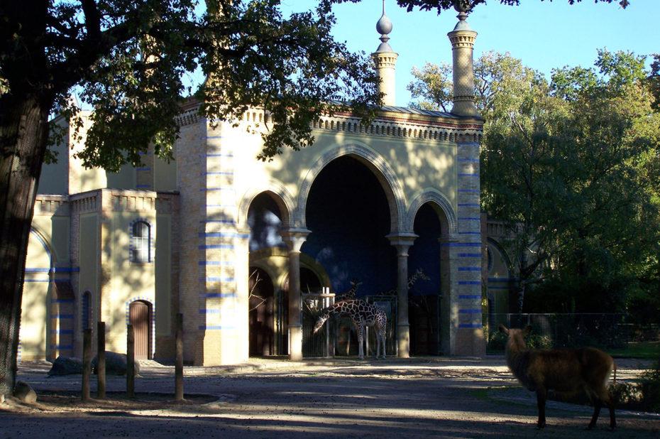 Le château des girafes