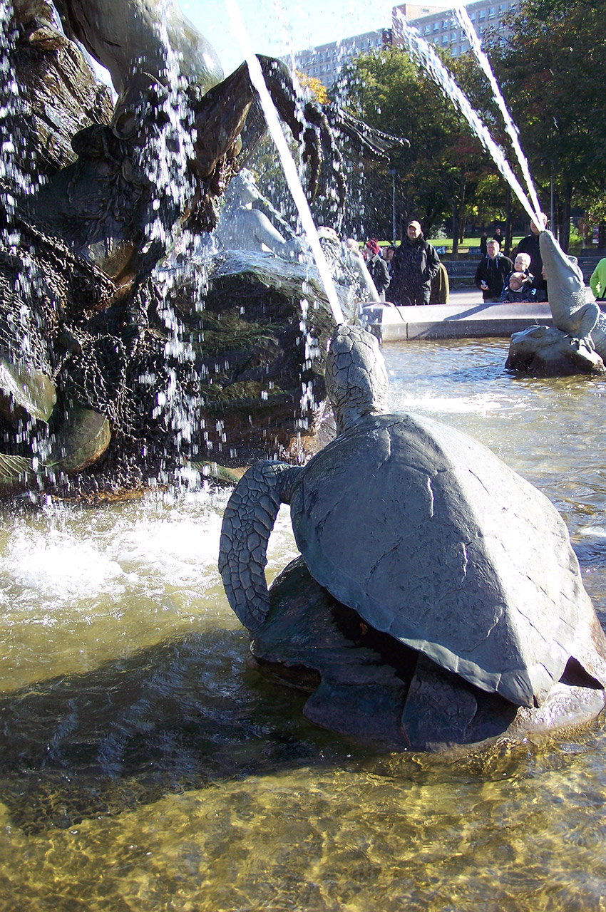 Tortues et crocodiles dans la fontaine de Neptune