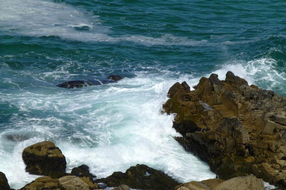 Les vagues se brisent sur les rochers