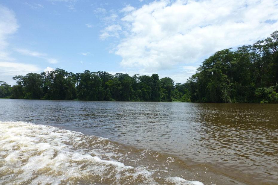 En bateau sur la rivière Tortuguero