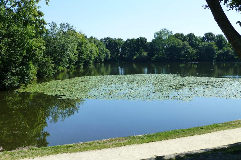 L'un des étangs de Rosporden