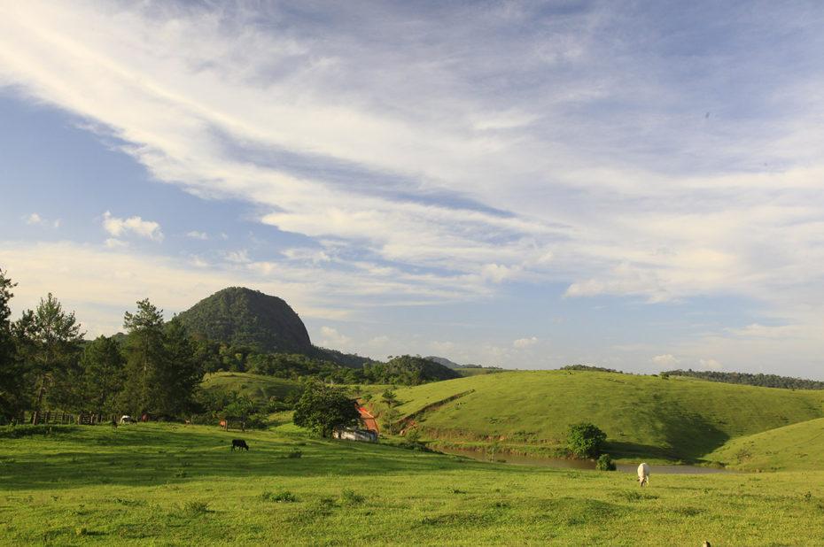 Nature préservée dans la campagne brésilienne