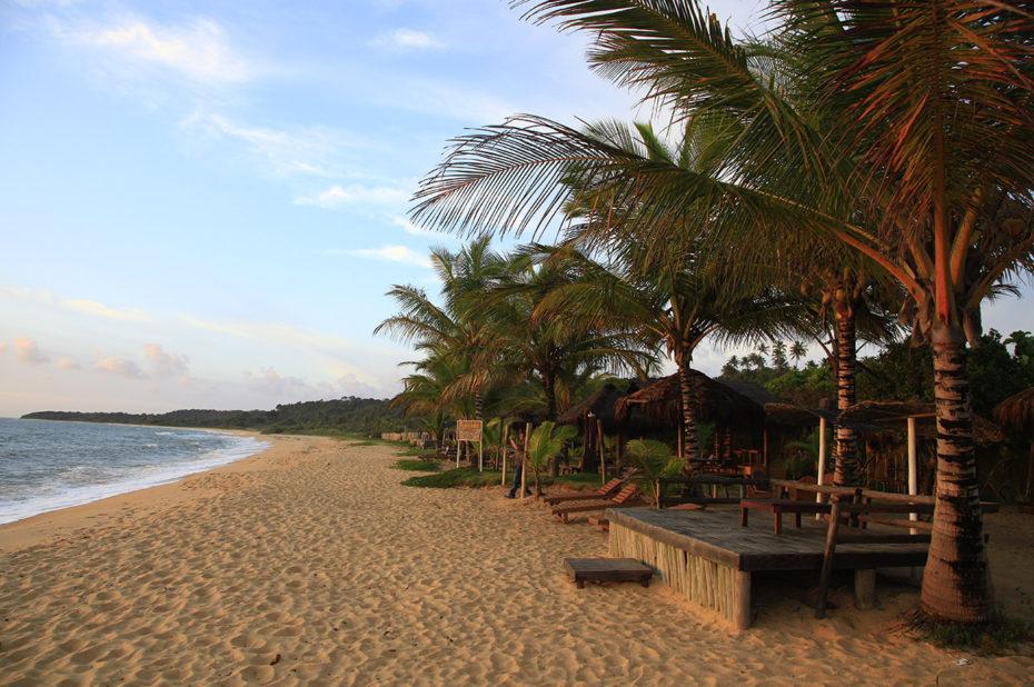 Reflets dorés du coucher de soleil sur la plage