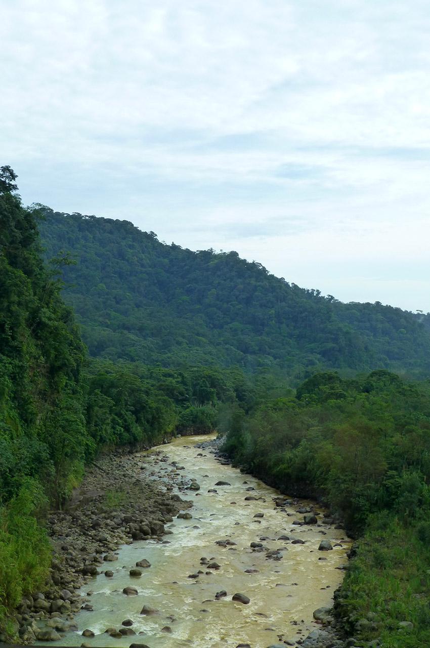 Rivière au sein de la forêt costaricienne