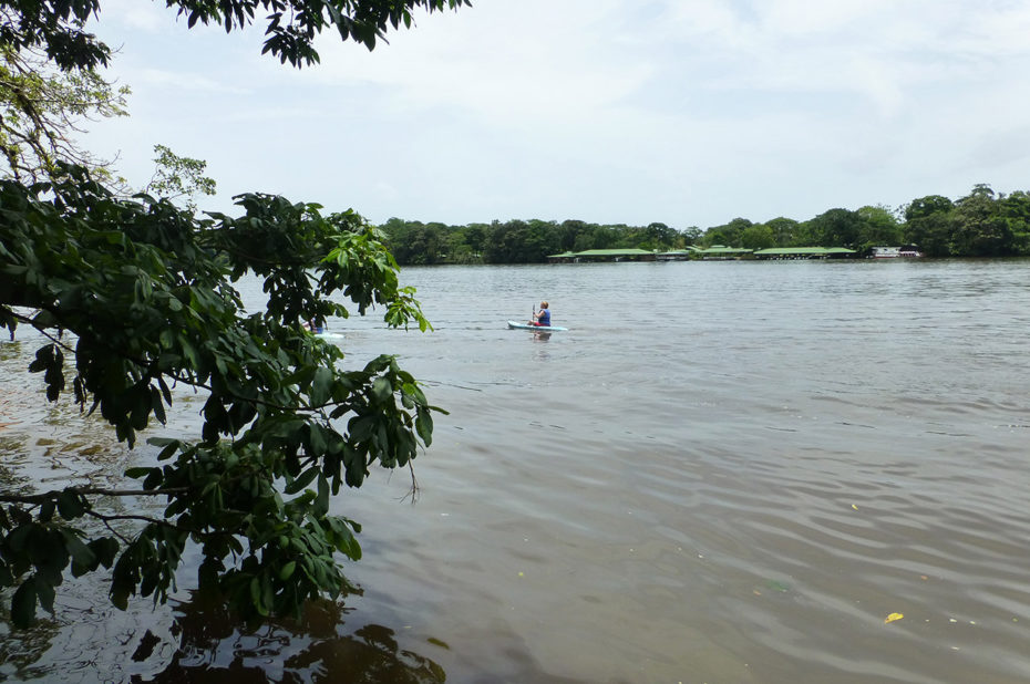 Kayak sur la rivière Tortuguero