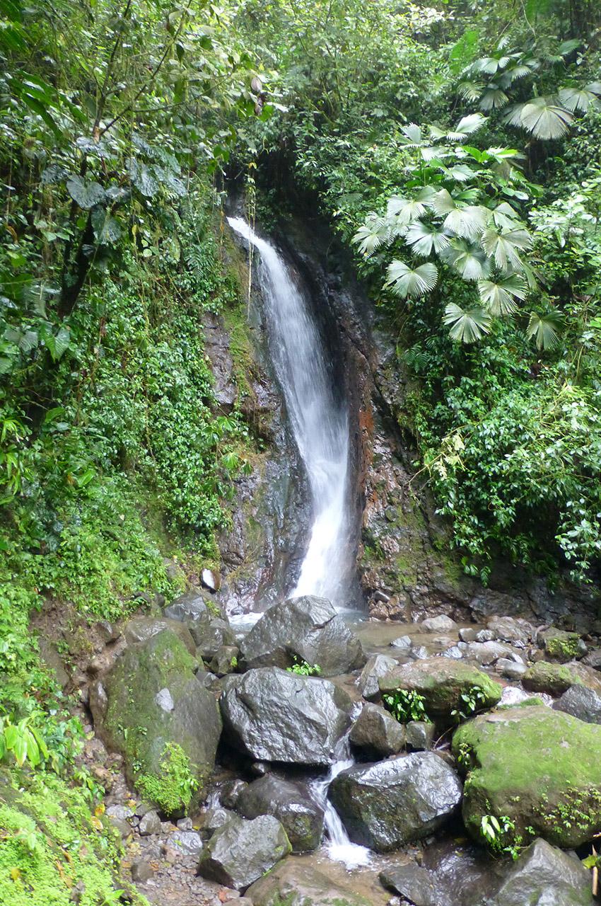 Une cascade à découvrir sur le parcours