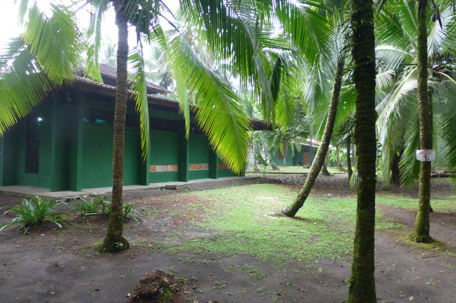 Centre de protection des tortues de mer à Tortuguero