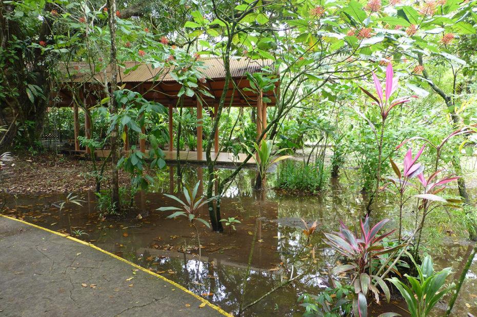 Le Lodge après la pluie