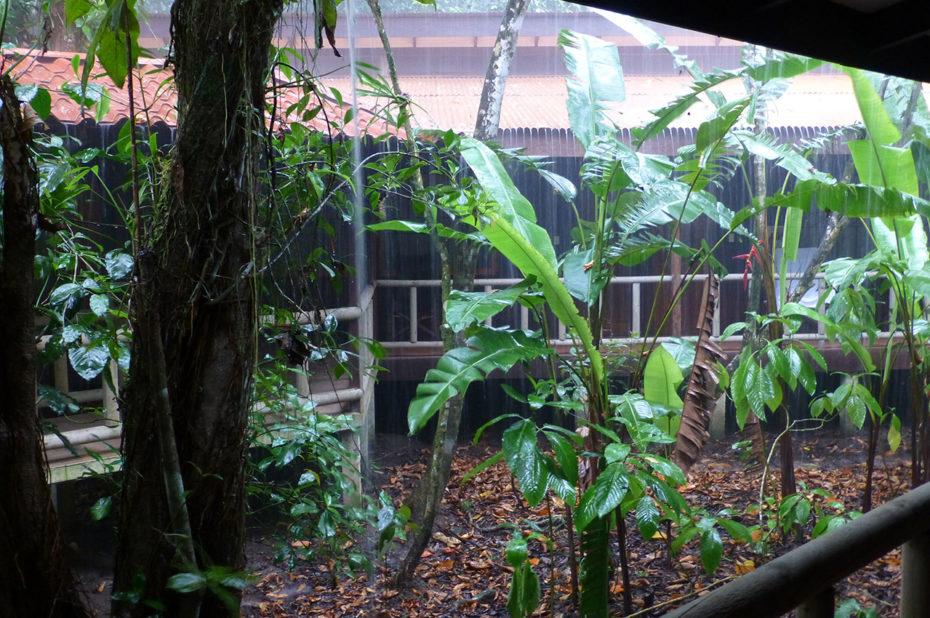 Le Lodge sous une pluie tropicale