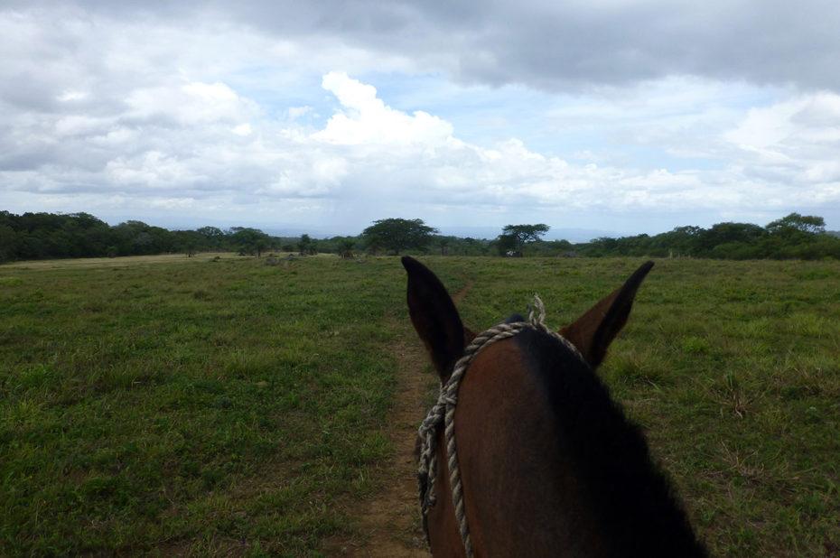 Balade à cheval dans la plaine