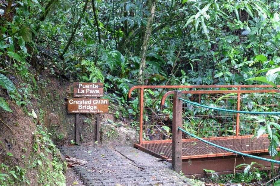 Le puente La Pava, un pont fixe de 10,30 m