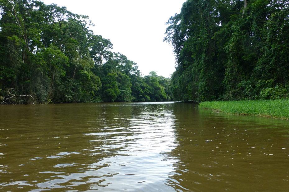 La majestueuse rivière Tortuguero