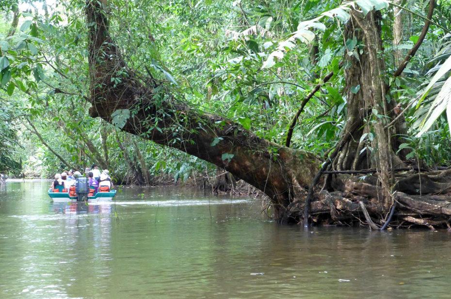 La visite du Parc de Tortuguero se fait essentiellement en bateau