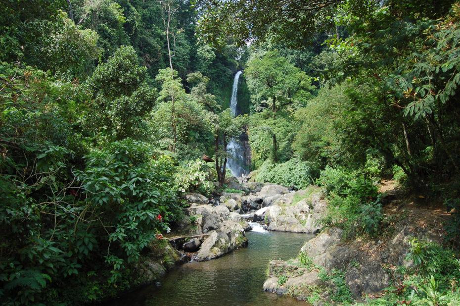 Chute d'eau en pleine forêt