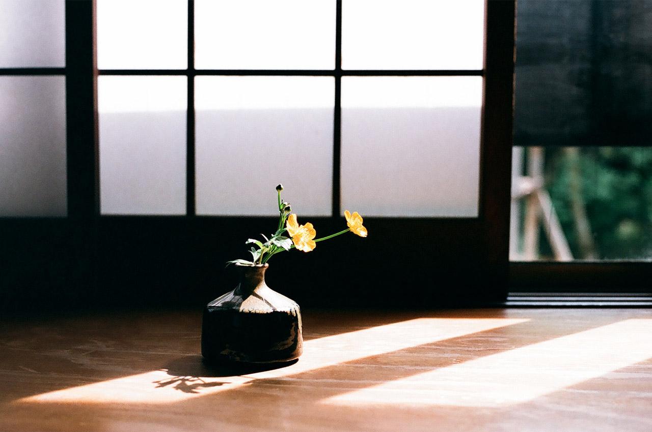 Fleur et rayon de soleil dans un Ryôkan
