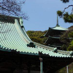 Au sein du sanctuaire shinto Enoshima-jinja