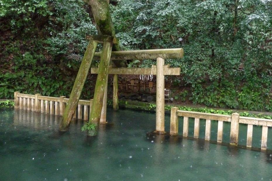 Le sanctuaire Kashima Jingu sous une pluie battante