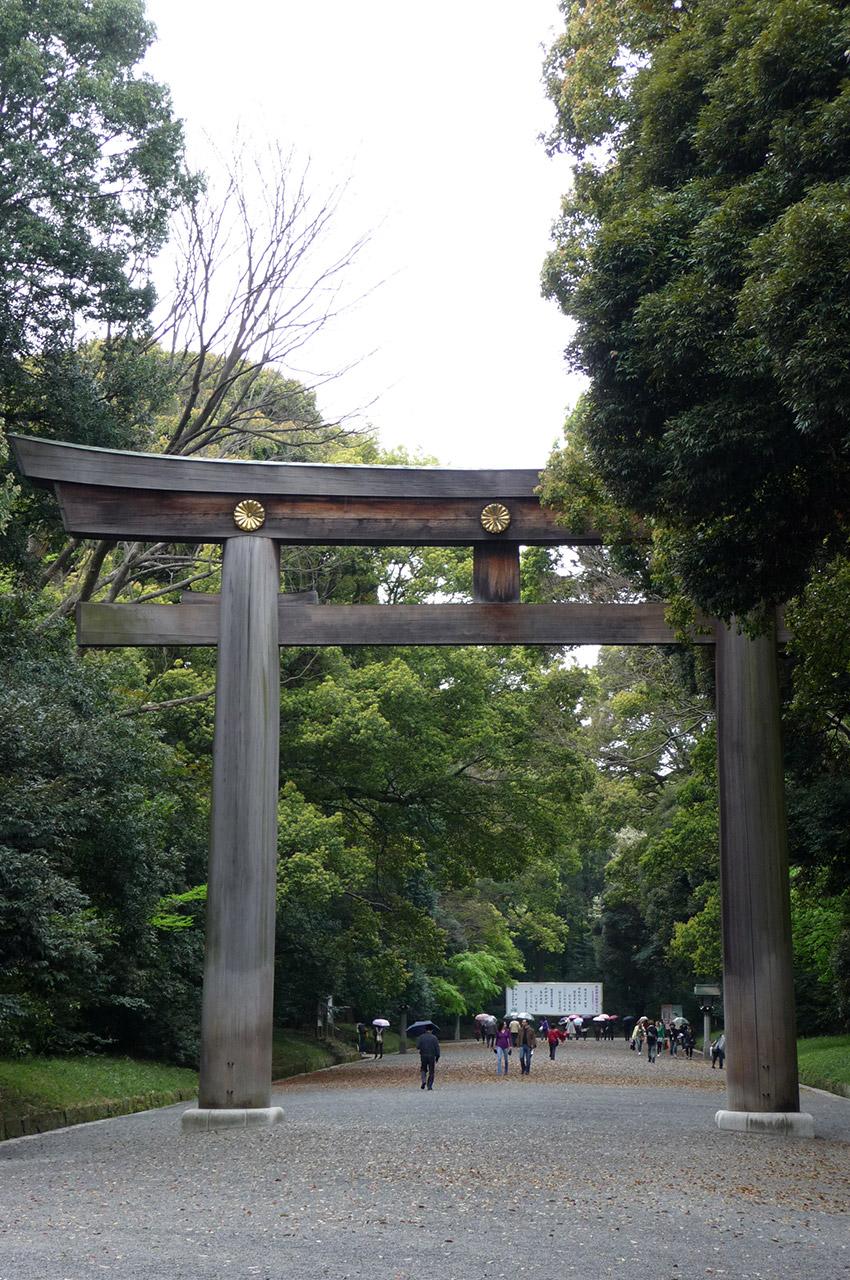 Torii du sanctuaire Meiji-jingū