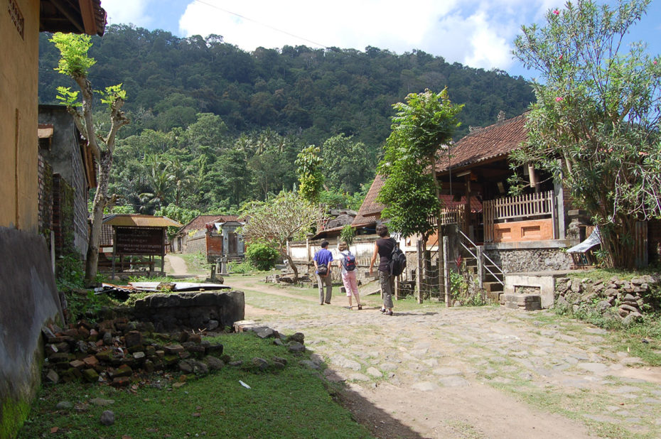 Visite d'un village traditionnel à Bali