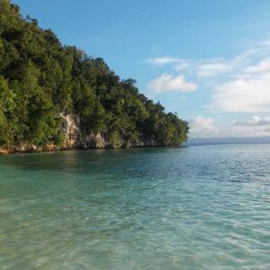 Les eaux limpides de l'Océan Indien