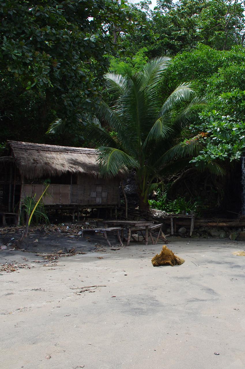 Petite hutte à l'ombre des arbres avec une table extérieure