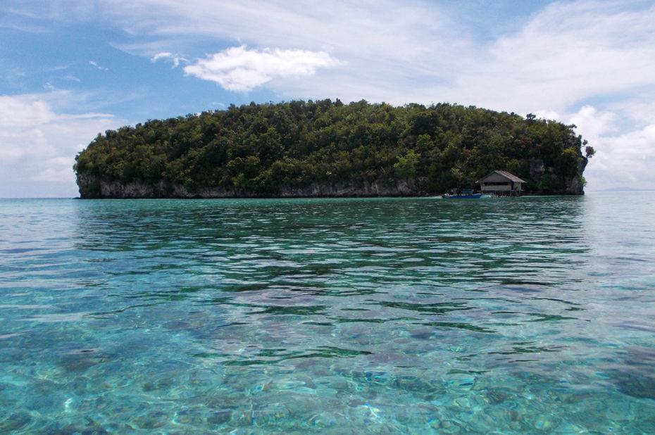 Île déserte verdoyante dans l'archipel des Raja Ampat