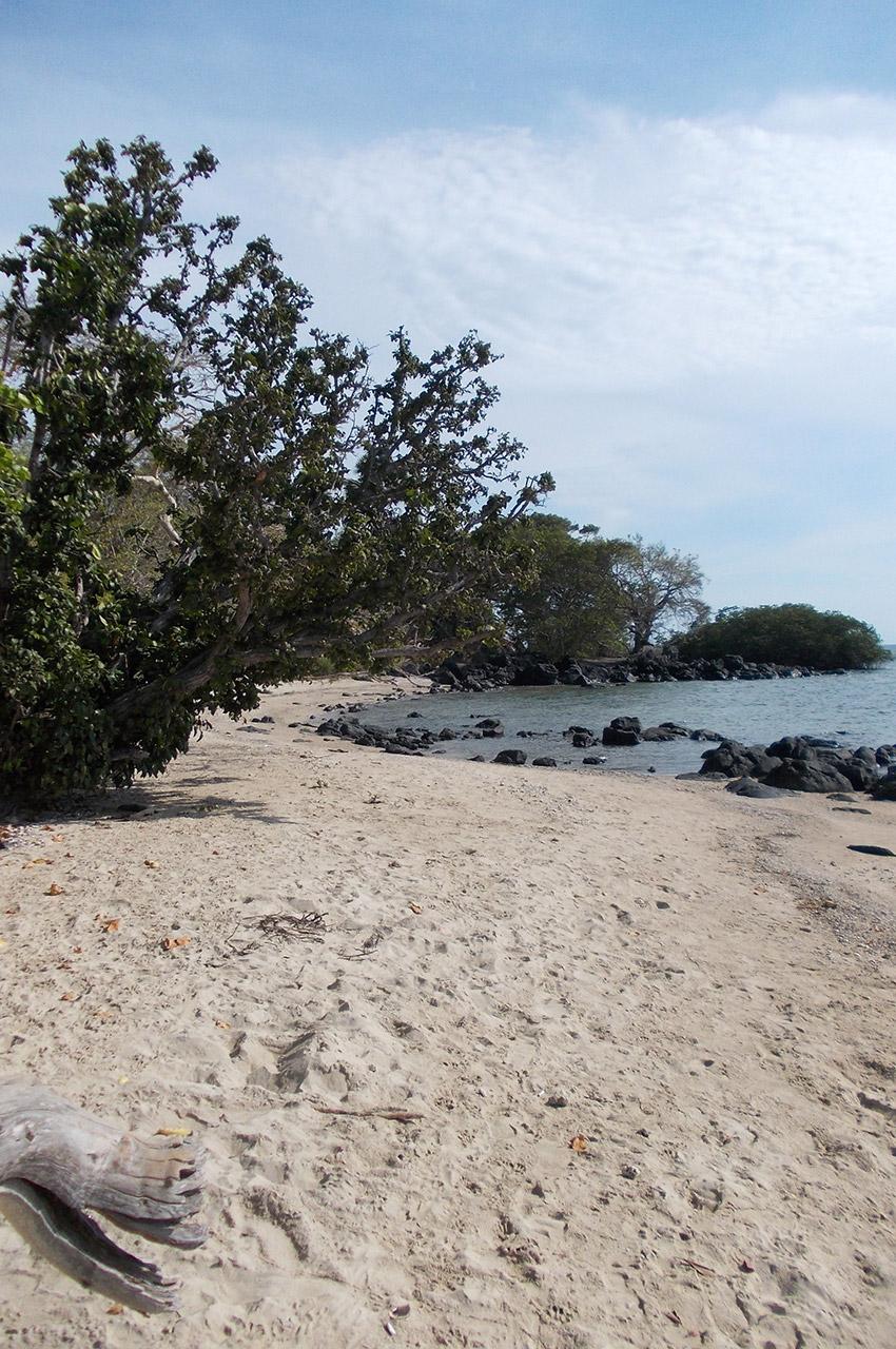 Une petite plage tranquille