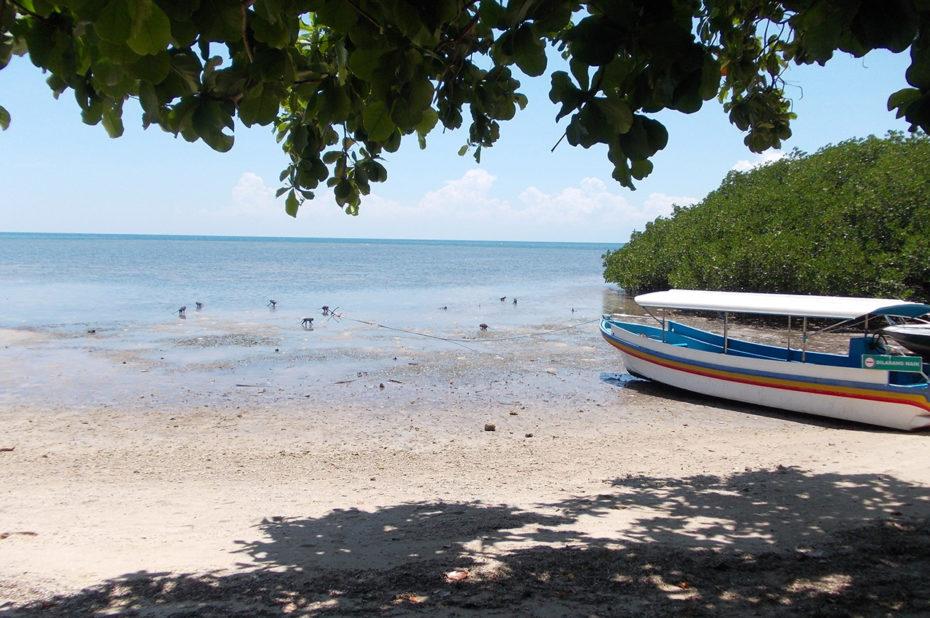 Plage de rêve pour se baigner dans l'Océan Indien