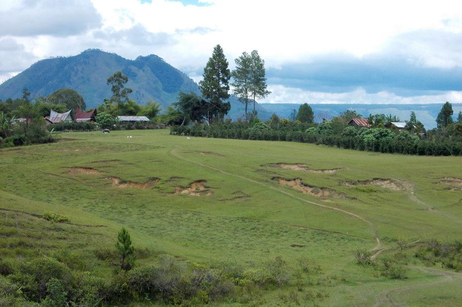 Plateau à Samosir avec maison batak
