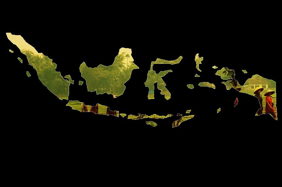 Reportages en Indonésie