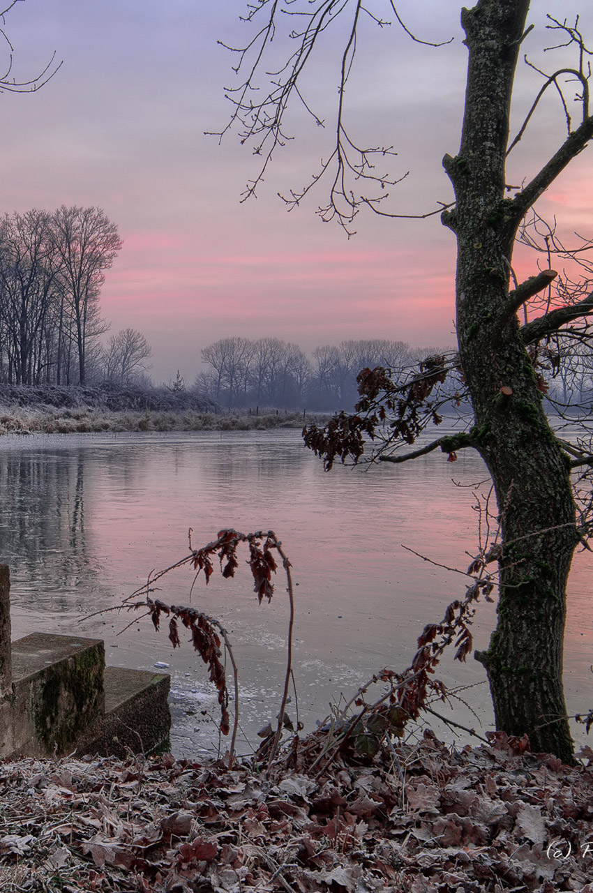 L'étang de Birieux, à l'aube, en hiver