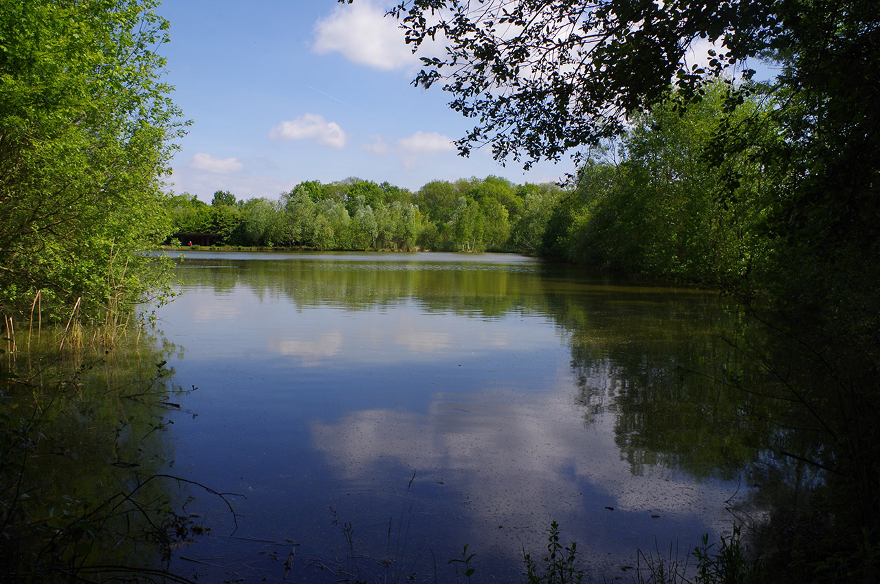 Étang au Parc des Oiseaux de Villars-les-Dombes