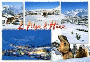 La marmotte, emblème de l'Alpe d'Huez