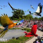 Spectacle au parc des oiseaux