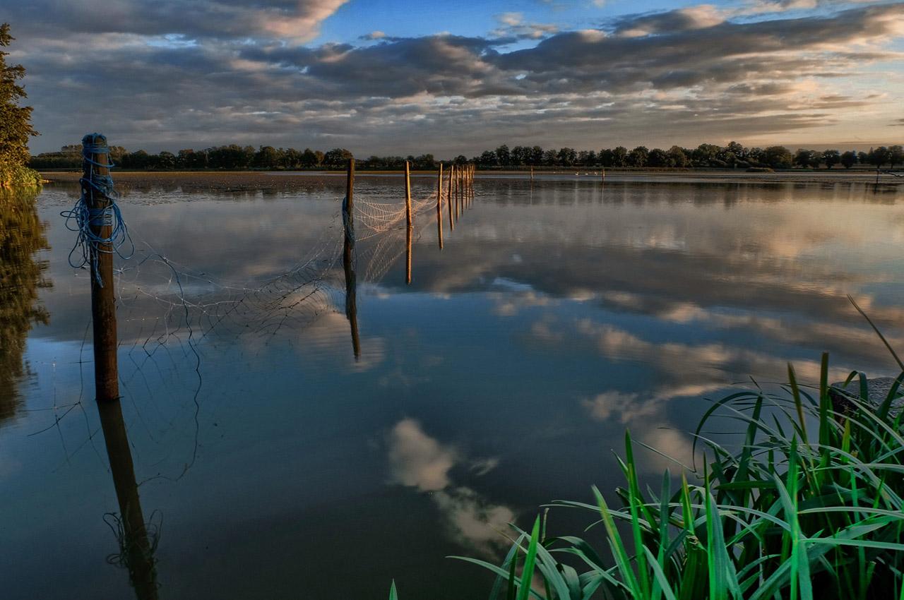 Reflets des nuages sur les étangs de la Dombes