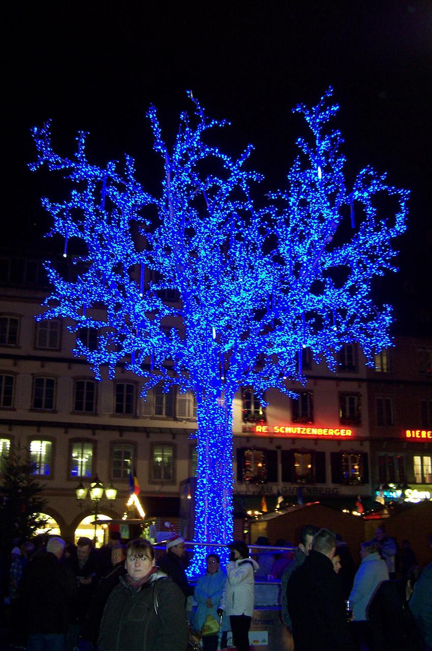 Un arbre lumineux haut en couleurs