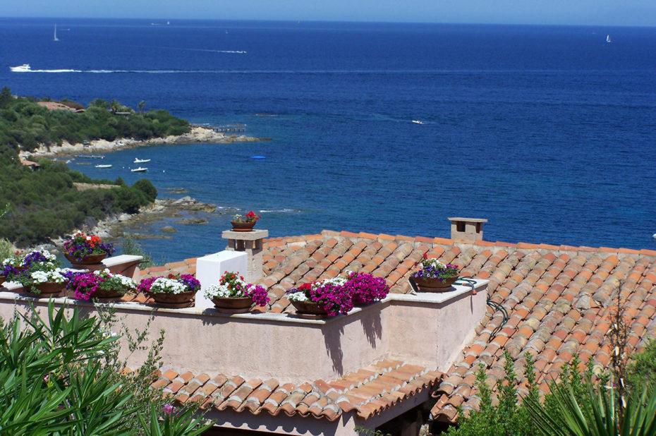 Des fleurs jusque sur les toits des maisons