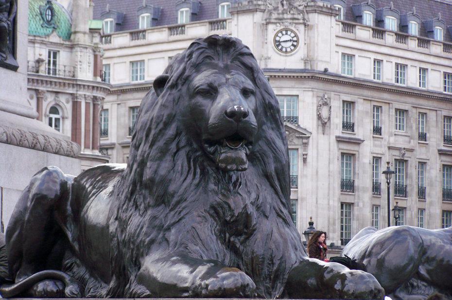L'un des lions gardiens de la statue de l'Amiral Nelson