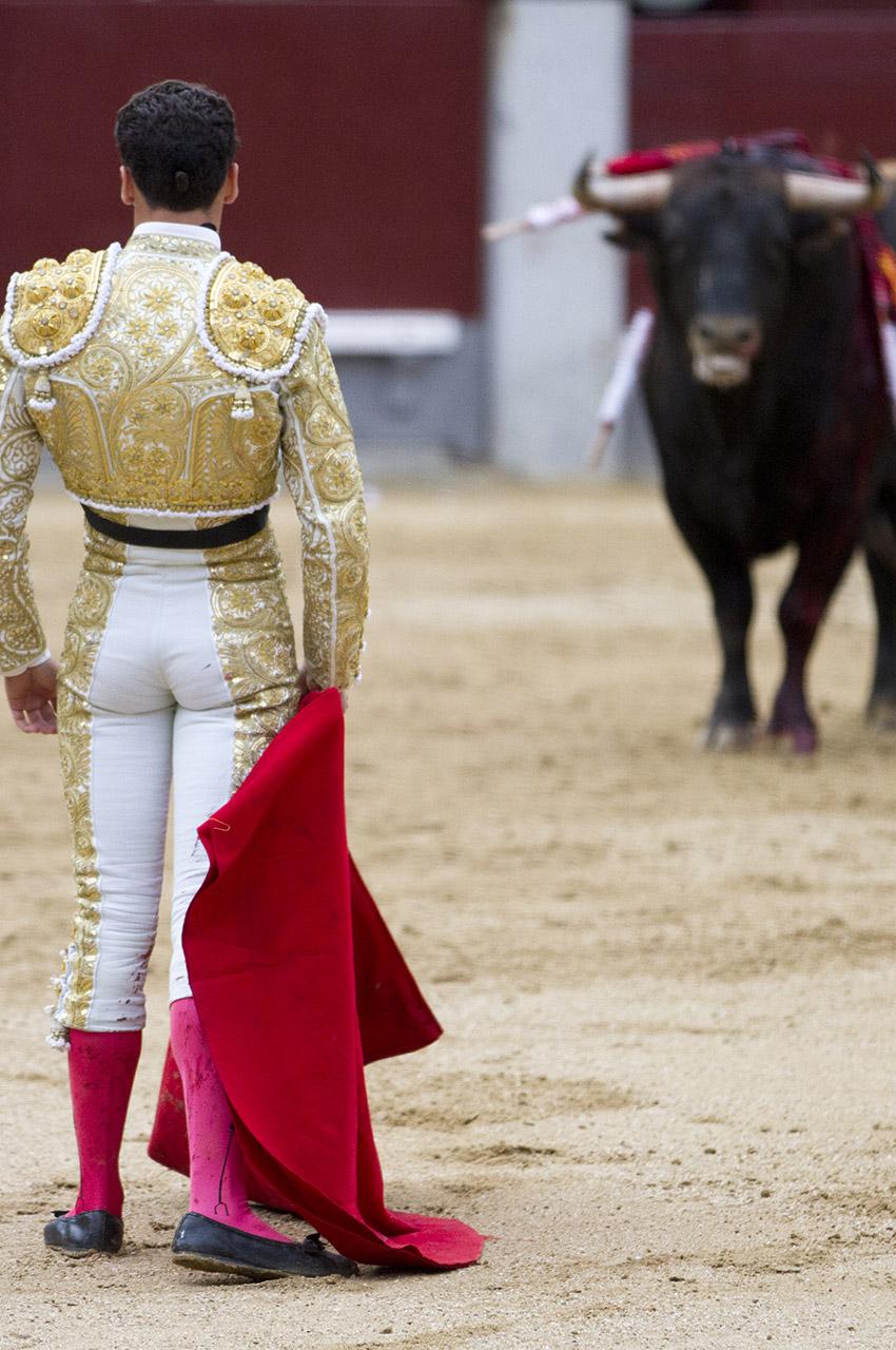 Le matador face au taureau blessé