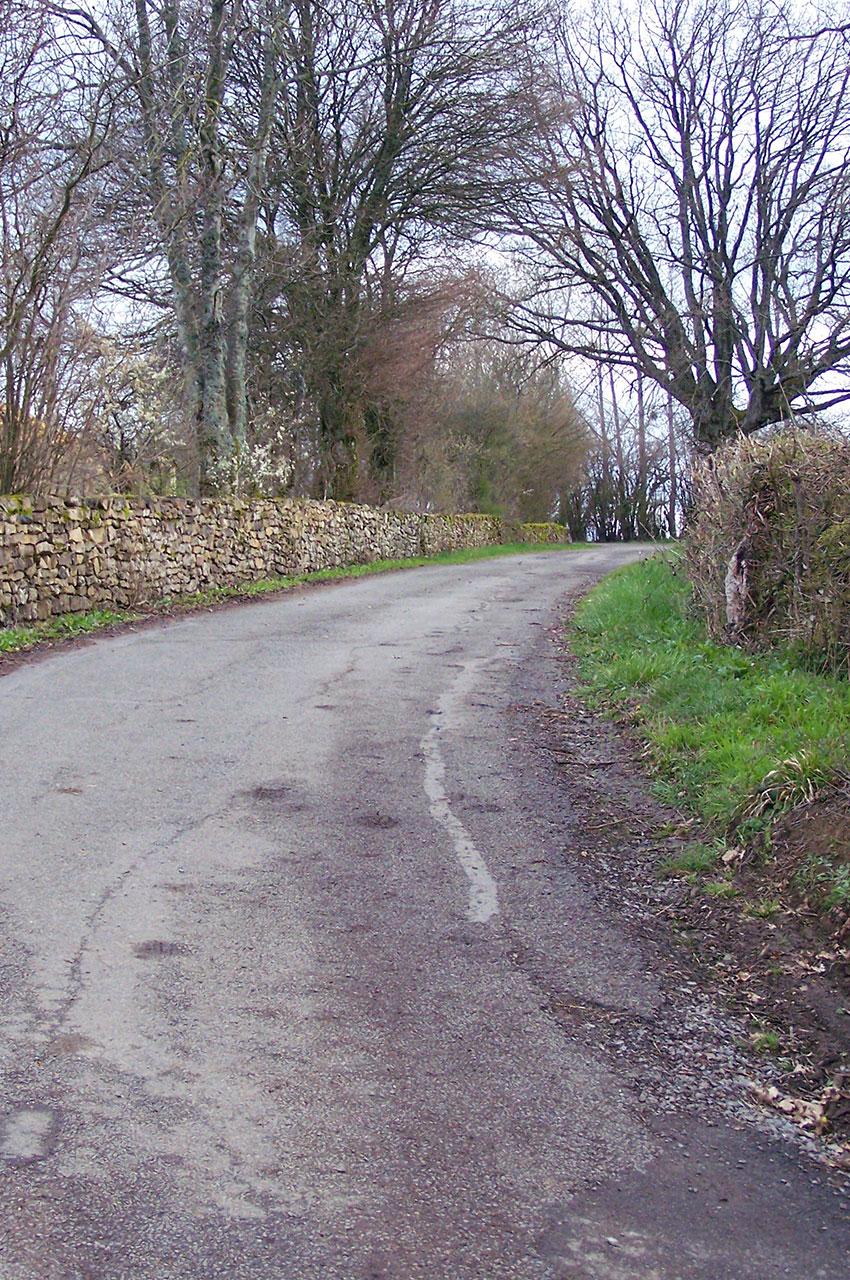 La route montant au Carmel de la Paix
