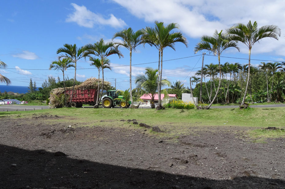 Tracteur transportant les récoltes