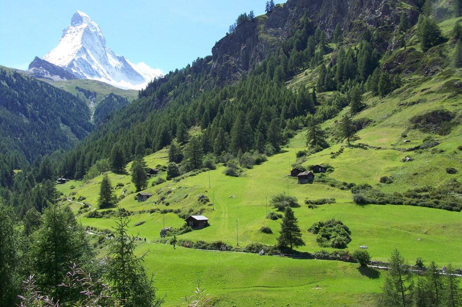 Alpages verdoyants dans la vallée de Zermatt