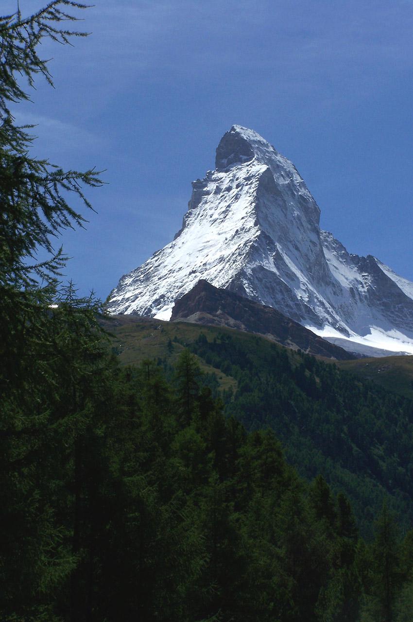 Le Cervin vu depuis la forêt de conifères proche de Zermatt