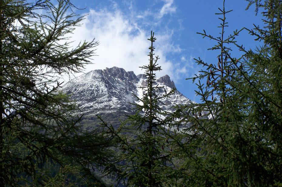 Montagne enneigée face à Täsch